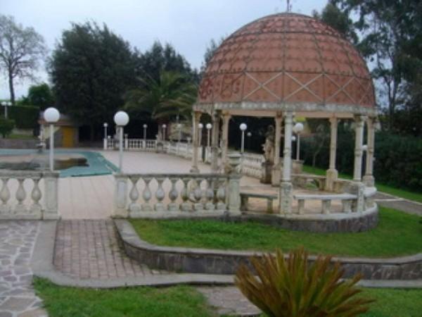 Villa in vendita a Roma, Trigoria, Con giardino, 790 mq - Foto 11