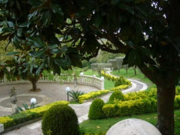 Villa in vendita a Roma, Trigoria, Con giardino, 790 mq - Foto 6