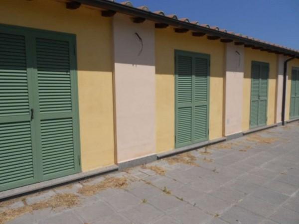 Villa in vendita a Roma, Giustiniana, Con giardino, 96 mq - Foto 5
