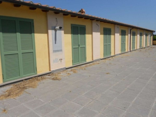 Villa in vendita a Roma, Giustiniana, Con giardino, 96 mq - Foto 1