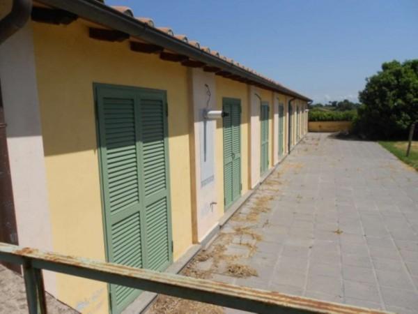 Villa in vendita a Roma, Giustiniana, Con giardino, 96 mq - Foto 3