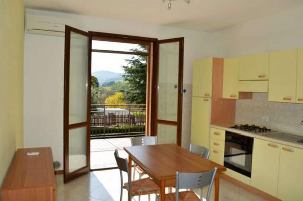 Appartamento in vendita a Forlì, San Lorenzo In Noceto, Arredato, con giardino, 50 mq - Foto 16