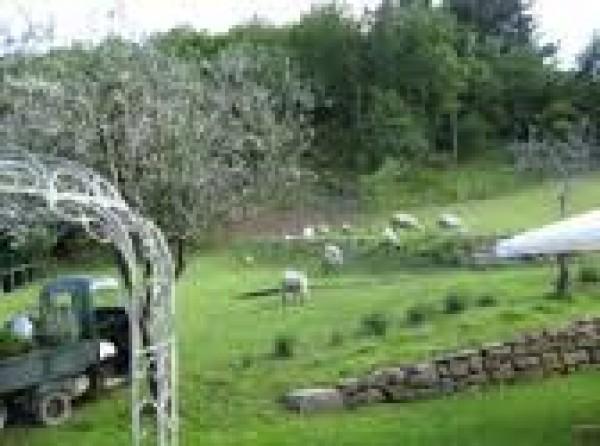 Rustico/Casale in vendita a Pontremoli, 700 mq - Foto 26