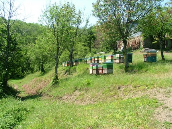 Rustico/Casale in vendita a Pontremoli, 700 mq - Foto 18