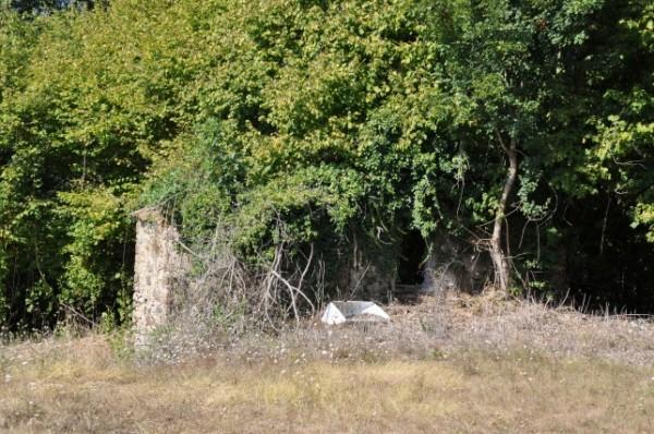Casa indipendente in vendita a Villafranca in Lunigiana, Quercia Torta, 200 mq - Foto 5