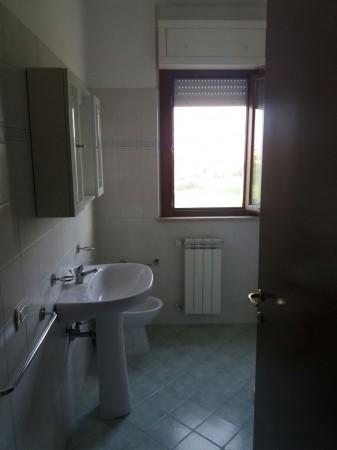 Bilocale in affitto a Latina, Borgo Carso, 50 mq - Foto 6