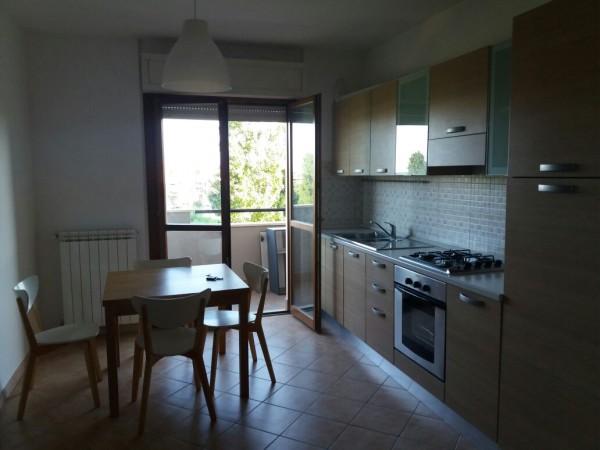 Bilocale in affitto a Latina, Borgo Carso, 50 mq - Foto 4