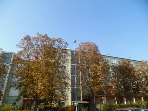 Appartamento in vendita a Alpignano, Con giardino, 100 mq - Foto 27