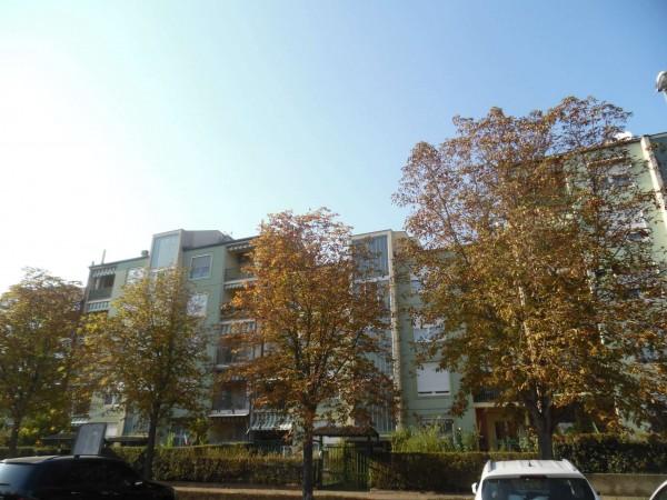 Appartamento in vendita a Alpignano, Con giardino, 100 mq - Foto 26