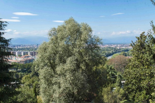 Appartamento in vendita a Torino, Corso Casale, Con giardino, 130 mq - Foto 2
