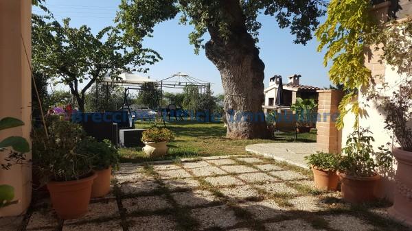 Casa indipendente in vendita a Campello sul Clitunno, Centrale, Con giardino, 150 mq - Foto 3
