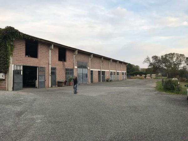 Capannone in affitto a Sant'Ambrogio di Torino, Con giardino, 450 mq