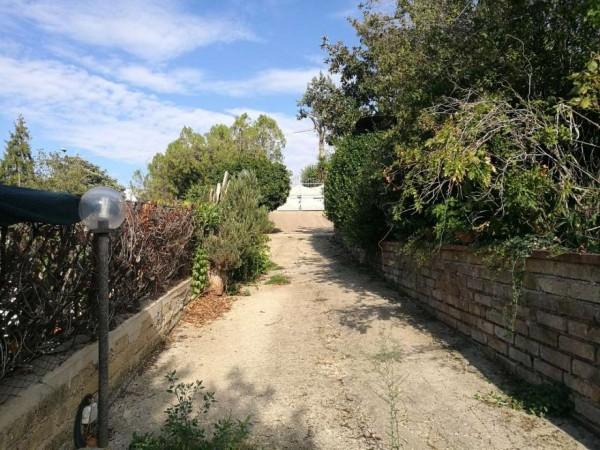 Appartamento in vendita a Frascati, Frascati, Arredato, con giardino, 135 mq - Foto 1