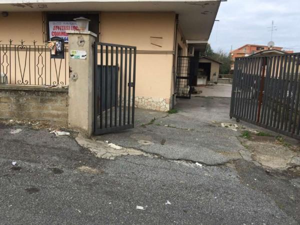 Locale Commerciale  in affitto a Roma, Borghesiana, 110 mq