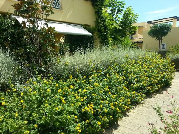 Appartamento in vendita a Pisticci, Marina Di Pisticci, Con giardino, 75 mq - Foto 17