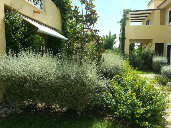 Appartamento in vendita a Pisticci, Marina Di Pisticci, Con giardino, 75 mq