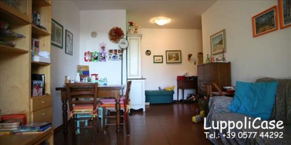 Appartamento in vendita a Castelnuovo Berardenga, 85 mq - Foto 12