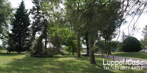 Appartamento in vendita a Castelnuovo Berardenga, 90 mq - Foto 14