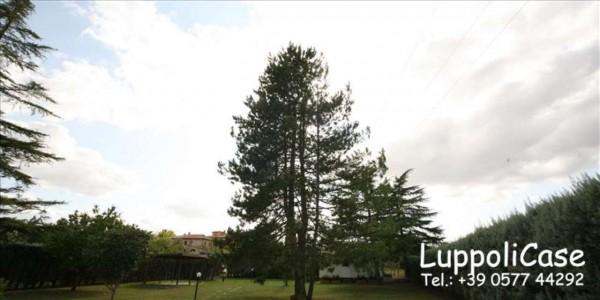 Villa in vendita a Siena, Con giardino, 245 mq - Foto 14