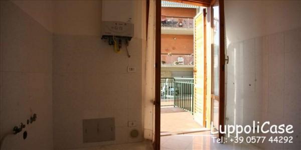 Appartamento in vendita a Siena, Con giardino, 83 mq - Foto 12