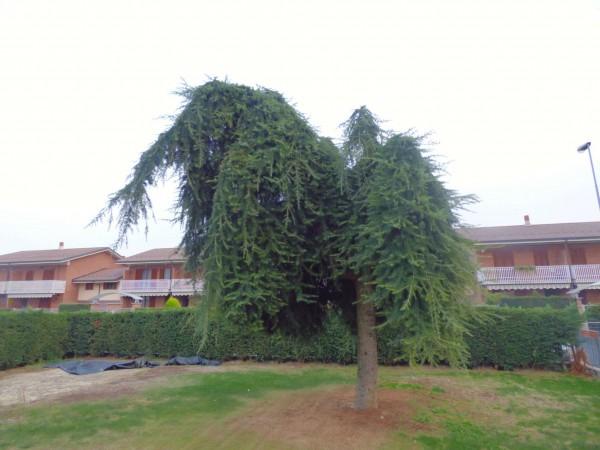 Appartamento in vendita a Caselle Torinese, Con giardino, 160 mq - Foto 26