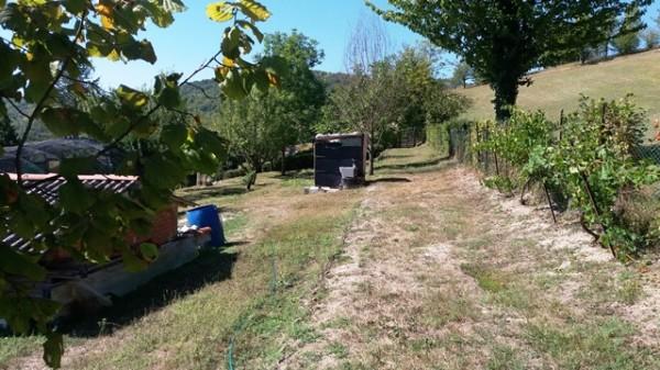Casa indipendente in vendita a Cocconato, Foino Tabiella, Con giardino, 262 mq - Foto 15
