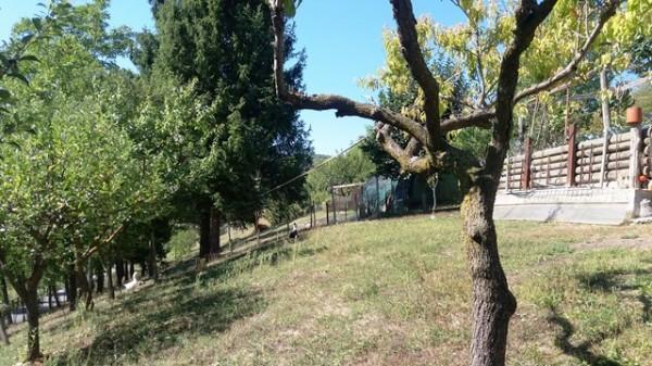 Casa indipendente in vendita a Cocconato, Foino Tabiella, Con giardino, 262 mq - Foto 11