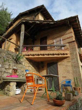 Locale Commerciale  in vendita a Camaiore, Collinare, Con giardino, 250 mq - Foto 34