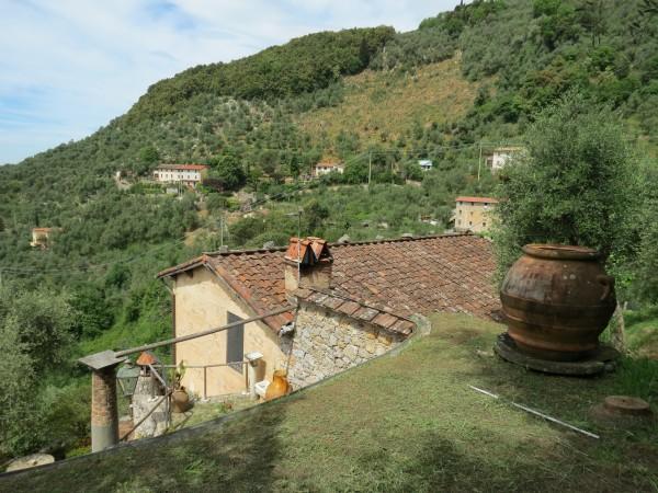 Locale Commerciale  in vendita a Camaiore, Collinare, Con giardino, 250 mq - Foto 37