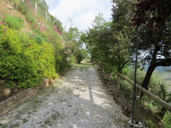 Locale Commerciale  in vendita a Camaiore, Collinare, Con giardino, 250 mq - Foto 50