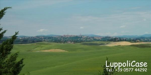 Villa in vendita a Siena, Con giardino, 250 mq