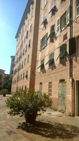 Appartamento in vendita a Camogli, 70 mq - Foto 5