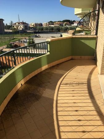 Appartamento in affitto a Aprilia, Campo Di Carne, 60 mq - Foto 2