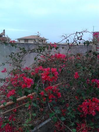 Casa indipendente in vendita a Sant'Agata di Militello, Centro, Con giardino, 600 mq - Foto 4
