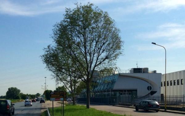 Capannone in affitto a Nichelino, Industriale - Mondo Juve, 2450 mq - Foto 32