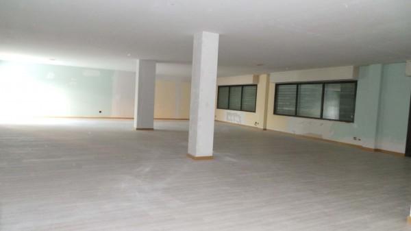 Locale Commerciale  in affitto a Udine, Udine Sud, 300 mq - Foto 2