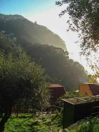 Casa indipendente in vendita a Zoagli, Con giardino, 120 mq - Foto 19
