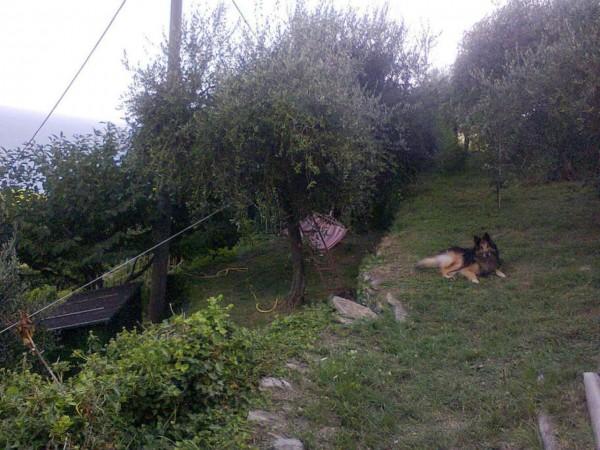 Casa indipendente in vendita a Zoagli, Con giardino, 120 mq - Foto 18