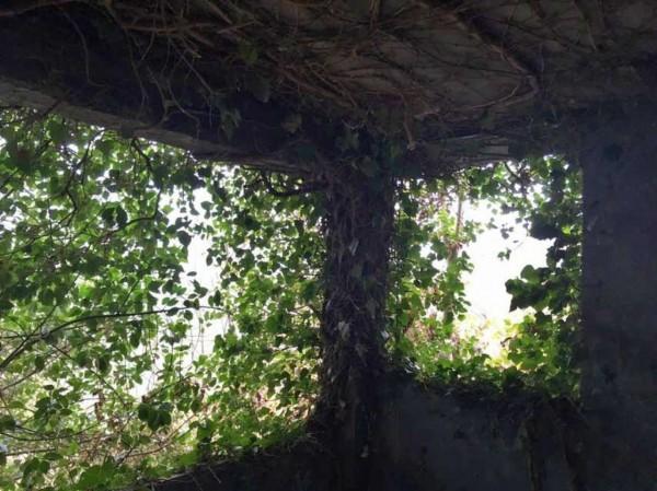 Rustico/Casale in vendita a Viù, Viu, Con giardino, 150 mq - Foto 9