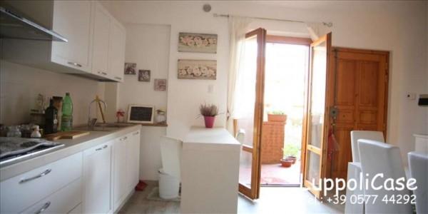 Appartamento in vendita a Castelnuovo Berardenga, Con giardino, 65 mq - Foto 12