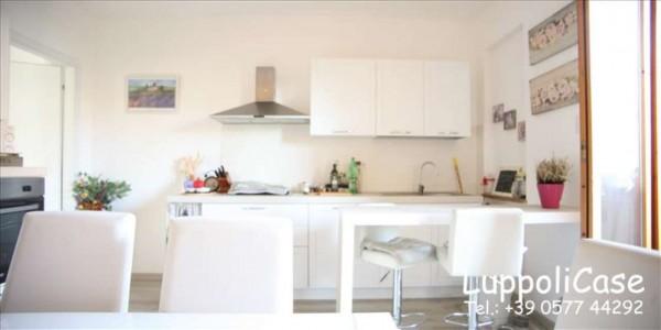 Appartamento in vendita a Castelnuovo Berardenga, Con giardino, 65 mq - Foto 15