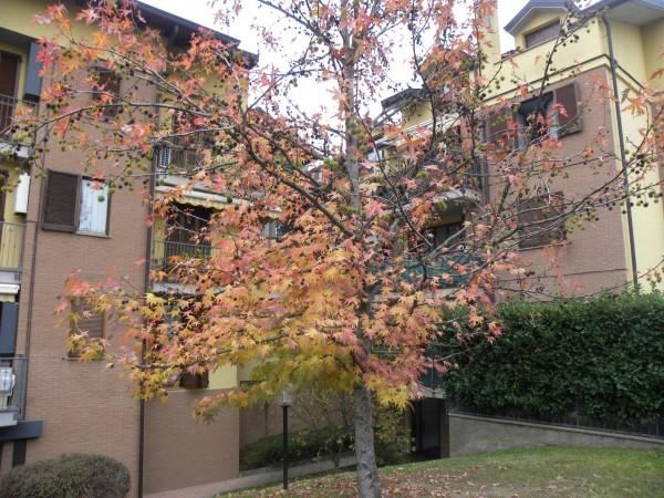 Appartamento in vendita a Desio, Parco, Con giardino, 80 mq