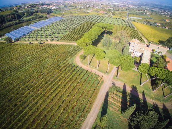 Rustico/Casale in vendita a Monte Porzio Catone, 615 mq - Foto 4
