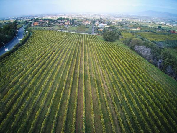 Rustico/Casale in vendita a Monte Porzio Catone, 615 mq - Foto 3