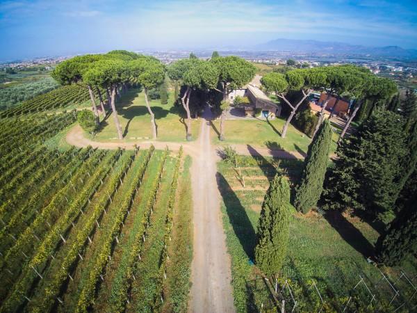 Rustico/Casale in vendita a Monte Porzio Catone, 615 mq - Foto 1