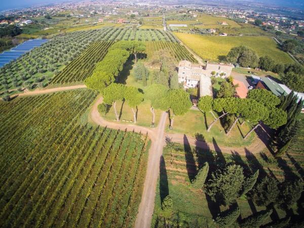 Rustico/Casale in vendita a Monte Porzio Catone, 615 mq - Foto 5