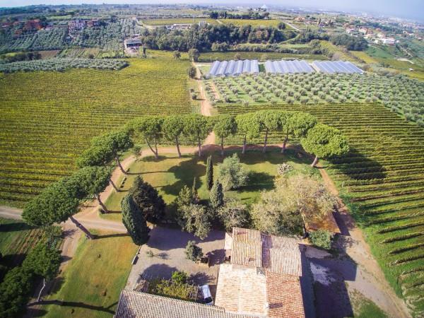 Rustico/Casale in vendita a Monte Porzio Catone, 615 mq - Foto 7