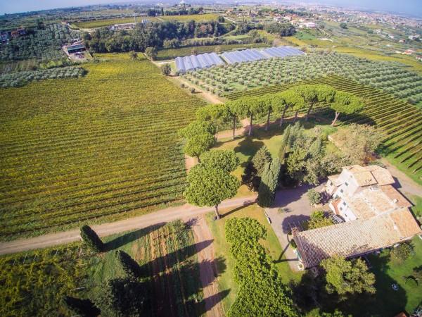 Rustico/Casale in vendita a Monte Porzio Catone, 615 mq - Foto 6