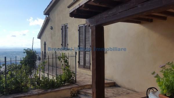 Casa indipendente in vendita a Trevi, Collinare, Con giardino, 280 mq - Foto 4