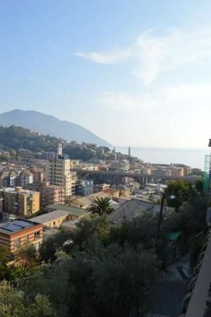 Appartamento in vendita a Recco, Montefiorito, Con giardino, 80 mq - Foto 7
